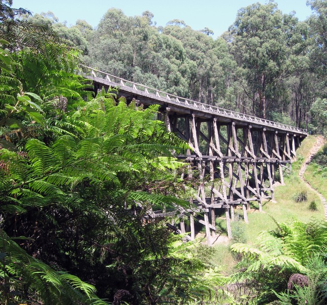 nojee trestle bridge, nojee, rail trail, gippsland railways, heritage bridge,