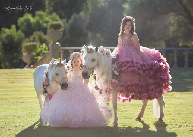 Ponies,for,any,occasions