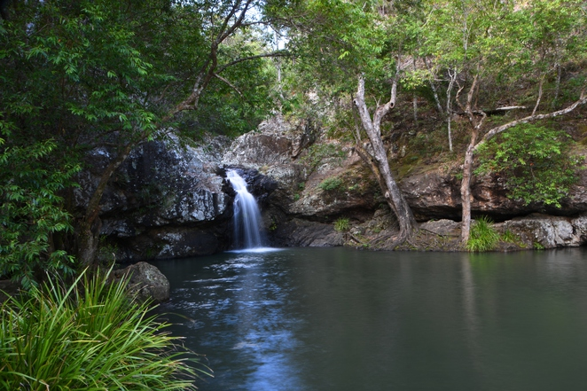 Rock Pool Swimming Kondalilla Falls Sunshine Coast Hinterland