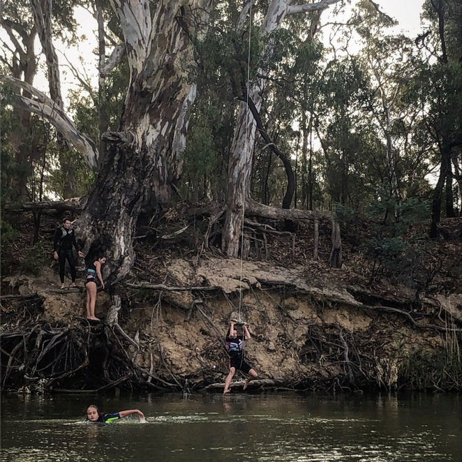 Rope swing, Murray river, Moama, Echuca