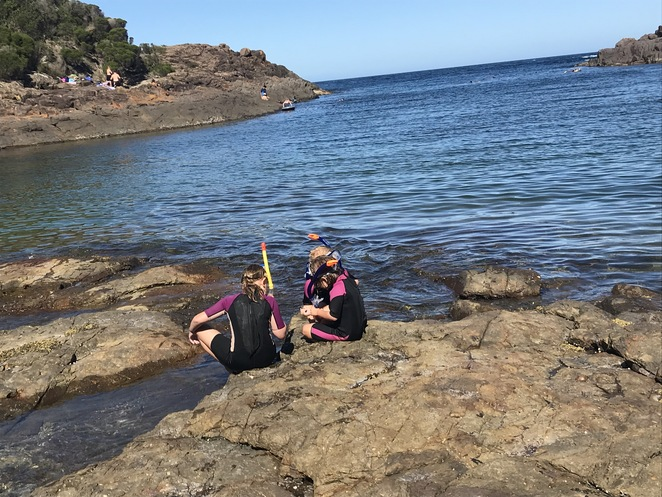 Snorkel or Dive at Bushrangers Bay, Bass Point, Wollongong, Shellharbour, What to do in Wollongong, NSW, Australia