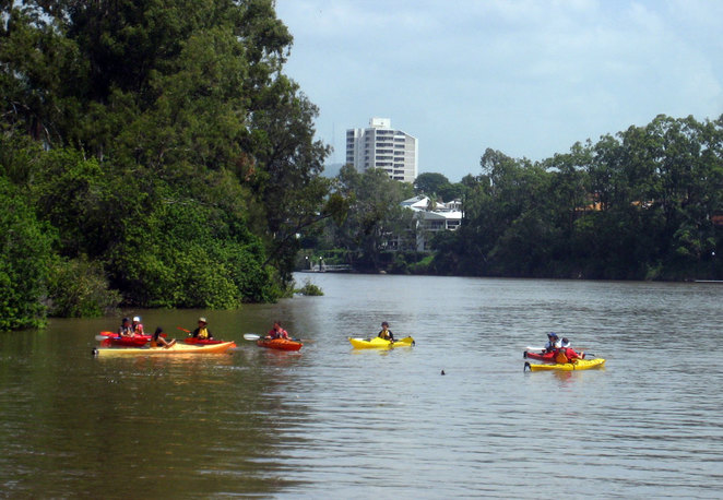 People kayaking on the Brisbane River near the University of Queensland