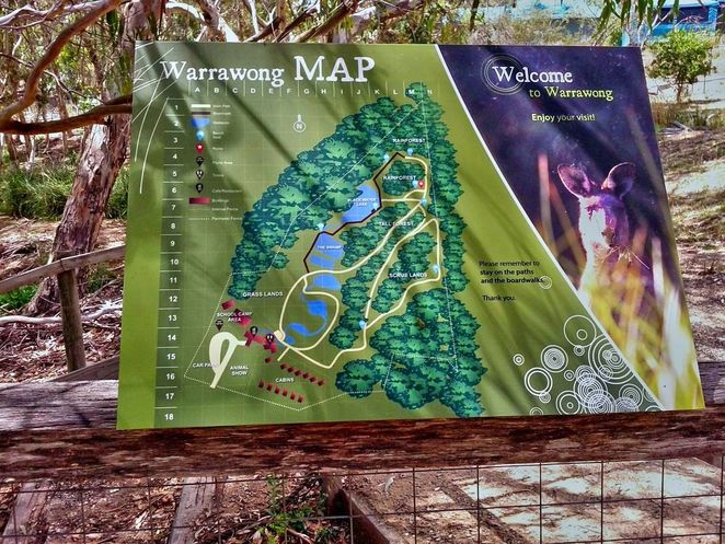Warrawong Wildlife Sanctuary, warrawong, sanctuary, adelaide hills, ecosystem, crowdfunding, south australian, mylor, wildlife, reopening