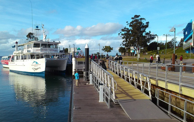 whale watching, huskisson, jervis bay, NSW, south coast, whales, dolphins, road trips from canberra,