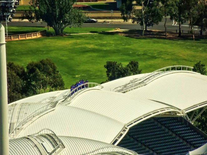 adelaide city rooftops, 2kw rooftop bar, rocket rooftop, rooftopping adelaide, hennessy rooftop bar, the gallery adelaide, sky bar adelaide, the majestic roof garden hotel, rooftop venues in adelaide, adelaide oval roof climb