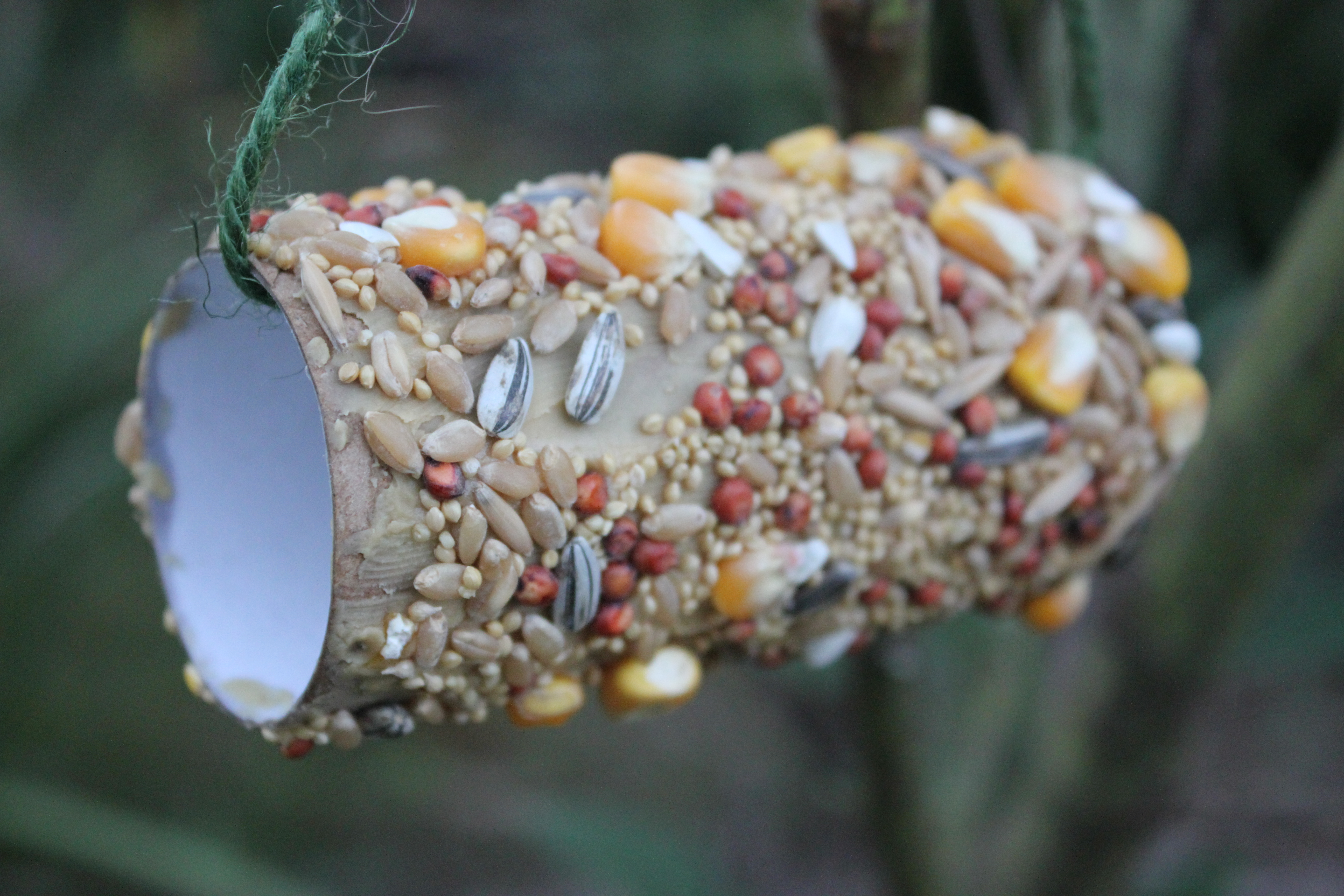 Recycled Bird Feeders - Everywhere