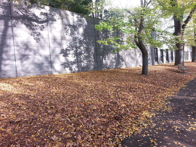 Carlton Gardens, Exhibition Building, Melbourne Museum, Autumn Leaves, Playing in Leaves, Elm Trees, Melbourne