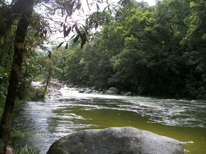 Daintree Rainforest National Park