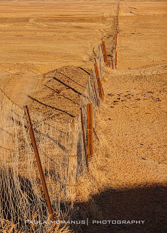The Dingo Fence South Australia