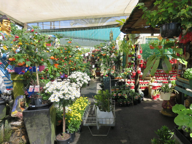 gardening,home improvement, fun things to do, places of interest, unusual things to do