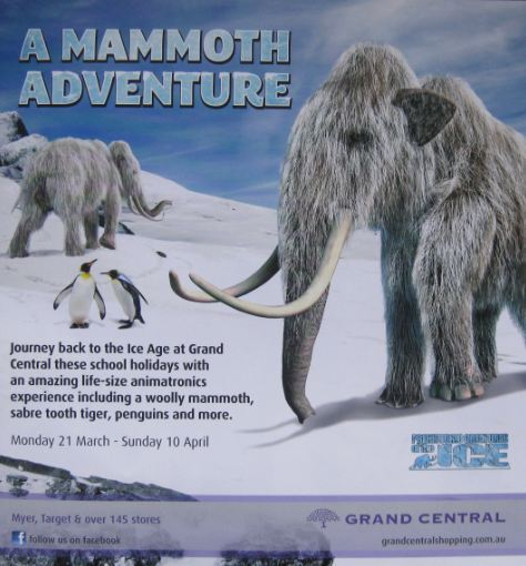 Mammoth Adventure flyer
