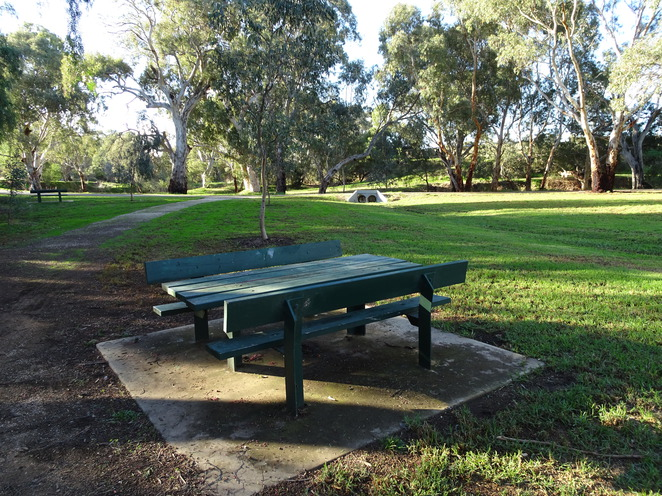 park, grass, table, bench seats