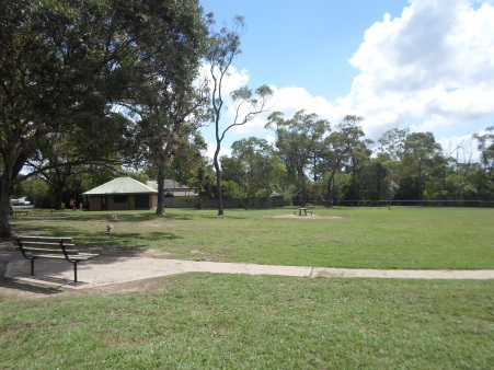 rofe park, dogs, dog park, hornsby heights