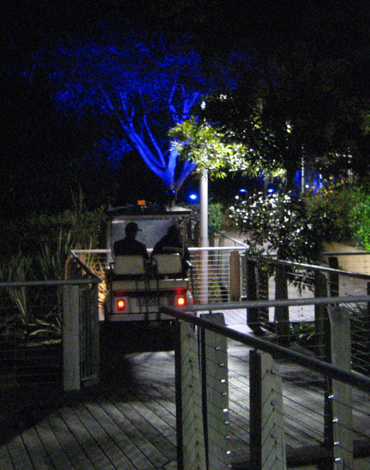 At night the parklands is well lit with many people around and security patrols