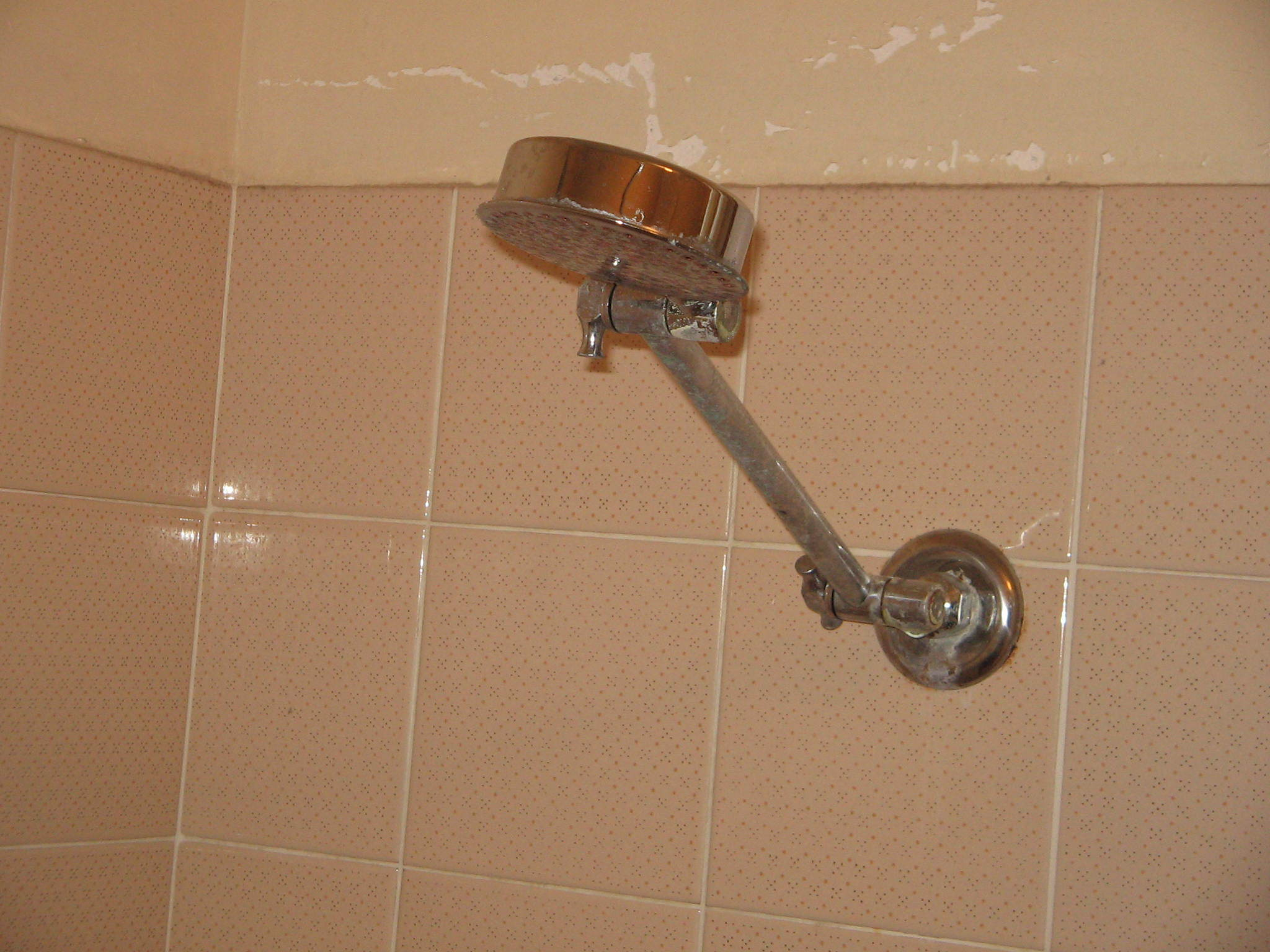 How to Change Your Showerhead - Everywhere