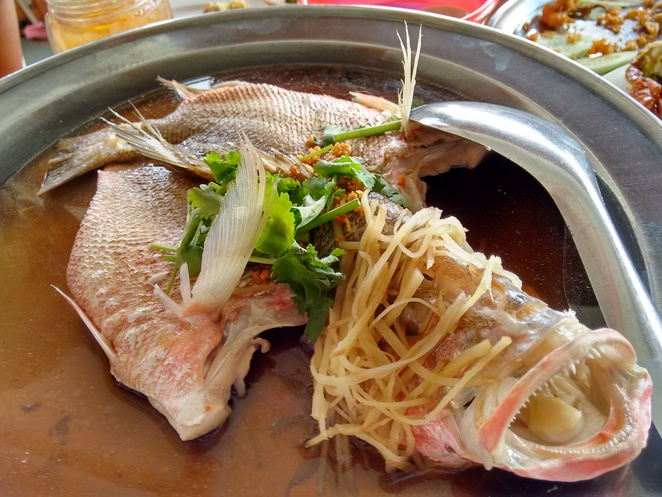 steamed fish river view seafood restaurant kuala selangor