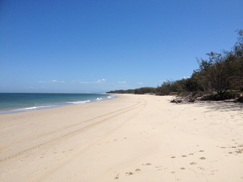 Swim in the surf at Bribie Island