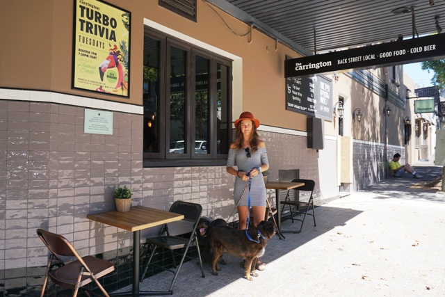 Dog Friendly Pubs In Ely