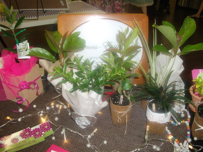 wedding, bonbonerie, plants