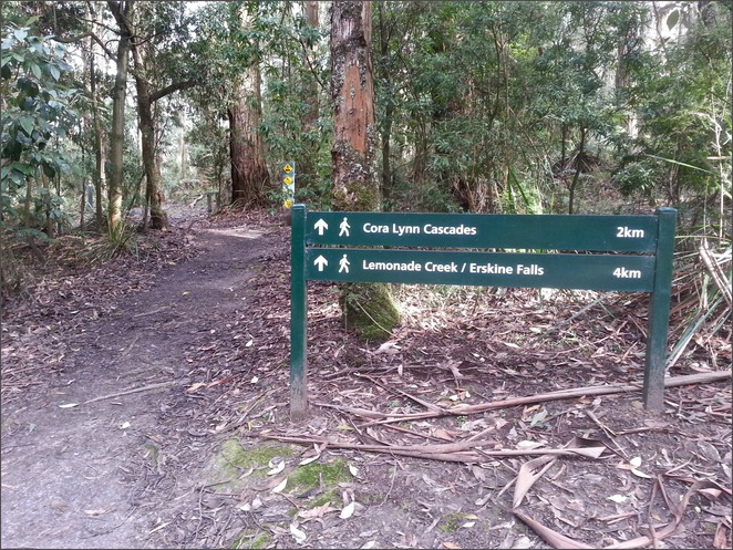 Cora Lynn Cascades, Lorne, Great Ocean Road, Otways, Track, Lemonade Creek, Erskine Falls, Signpost, Start of walk, Start of track,