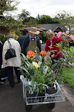 Friends Fantastic Autumn Plant Sale