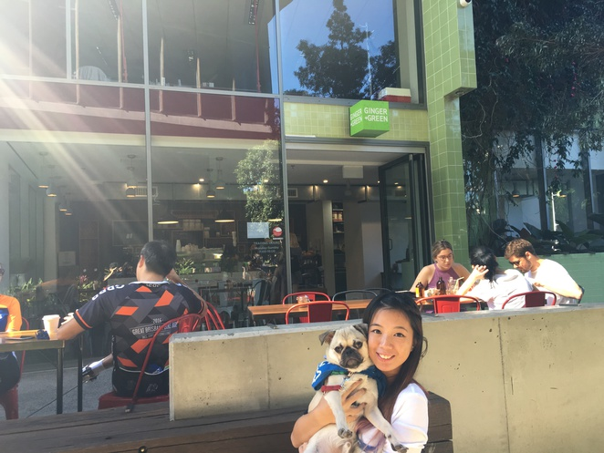 ginger and green, cafe, south brisbane, south bank, dog friendly, all day menu, brisbane