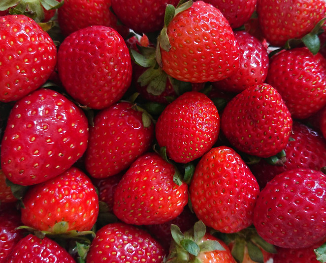 Green valley strawberries cafe farm gate sale adelaide hills nairne food photography farmer local business