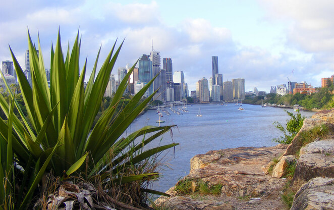 On top of the Kangaroo Point Cliffs