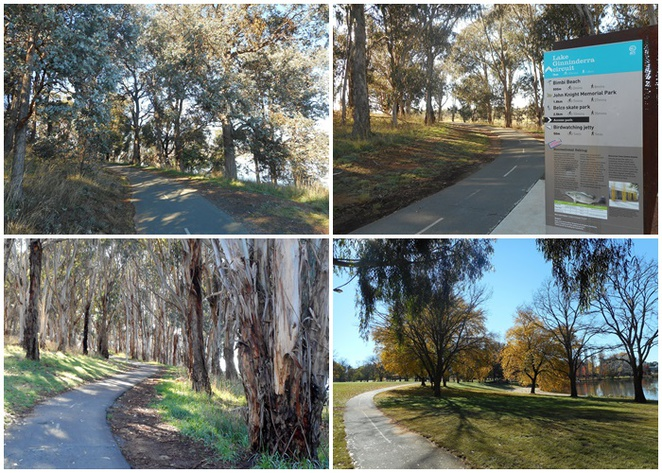 lake ginninderra walk, paths, walks, canberra, belconnen, ACT, belconnen town centre, john knight memorial park, lakes,