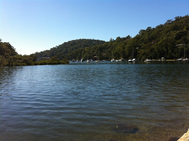 McCarrs Creek Reserve, Pittwater, Picnic, BBQ, Park