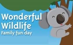 Redland school holidays brisbane weekendnotes wonderful wildlife day indigiscapes negle Images