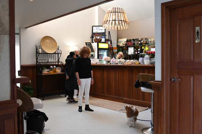 Meet and greet other guest at the bar with your pet