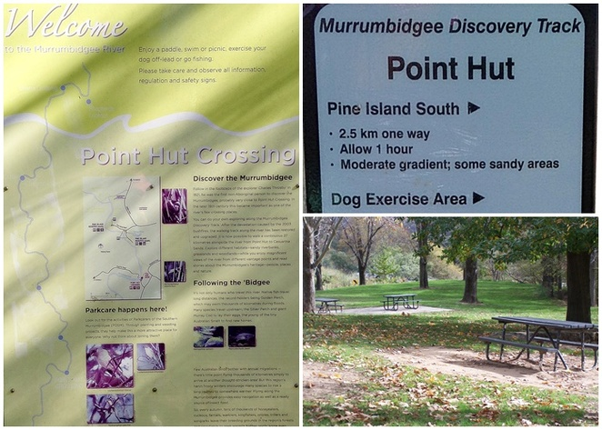 pine island, point hut crossing, murrumbidgee discovery track, bushwalks, short walks, bushwalking with kids, ACT,