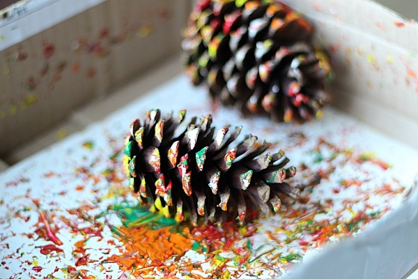 Pinecone,painting