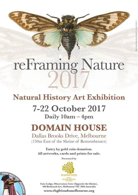 reFraming Nature, Natural History, Botanic Art, Exhibition, melbourne, 2017, Andrew carr, Dianne Emery