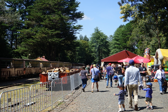 THOMAS THE TANK, TRAIN RIDE, PUFFING BILLY, CHILDREN, ENTERTAINMENT, KIDS, MELBOURNE