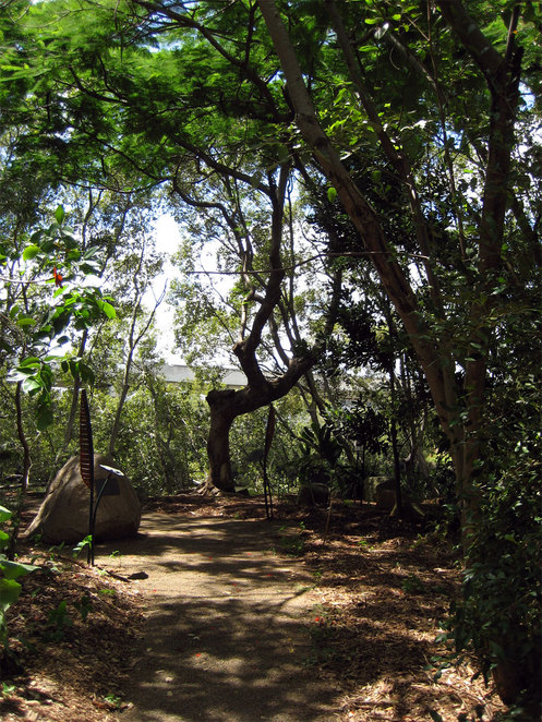 Bowen Bridge Park is one of the Highlights of the Enoggera Creek Walk