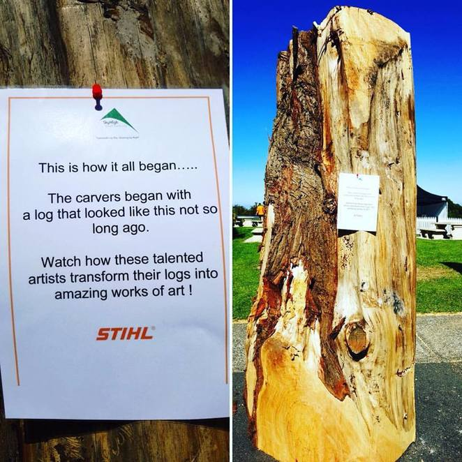 Australian Chainsaw Carving Championships