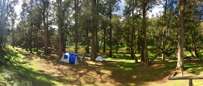 Platypus Valley Riverside Camping