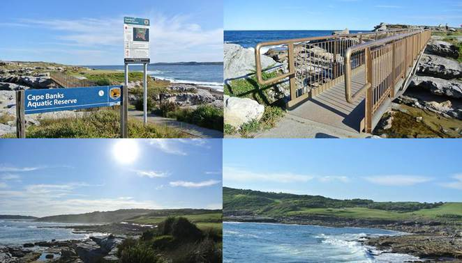 Cape Banks Aquatic Reserve