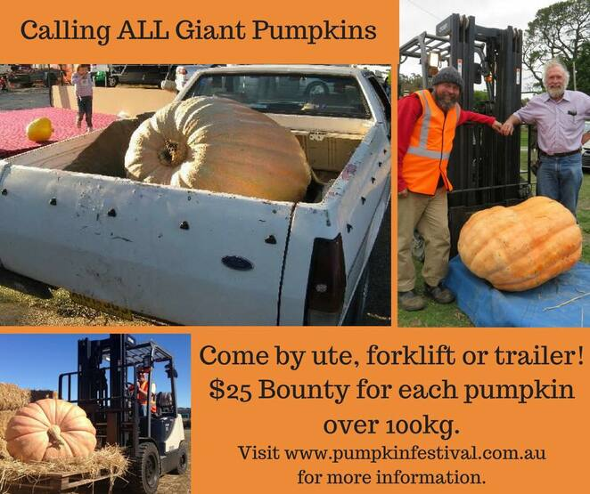 collector village pumpkin festival, NSW, collector, kids, family friendly, events, festivals, whats on, canberra, things to do,