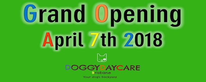 doggy day care Brisbane, dog friendly, dog event, Brisbane, south Brisbane, inner suburbs, hydrobath, photo booth, Britney estella photography, goodie bags, treats, raffle, fundraiser, dog rescue, Jackie trad, Jonathan Sri, councillor for the Gabba, Barkley and pips, suburban pup