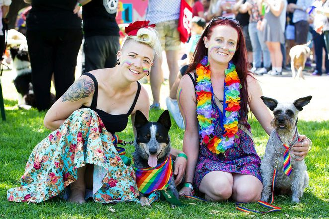 feast on the foreshore, semaphore, semaphore foreshore, fun things to do, fun for kids, free things to do, market stalls, feast festival, fresh fm, dog show