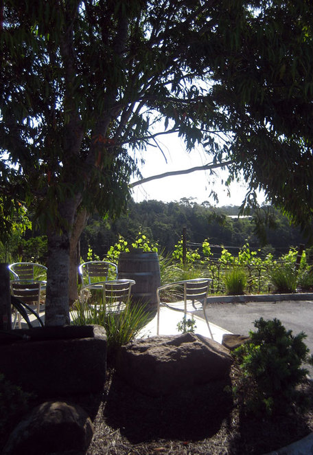 Enjoy the rustic vineyard setting at Flame Hill