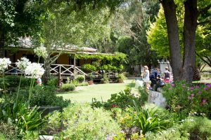 gardens, winery, relaxed, coffee