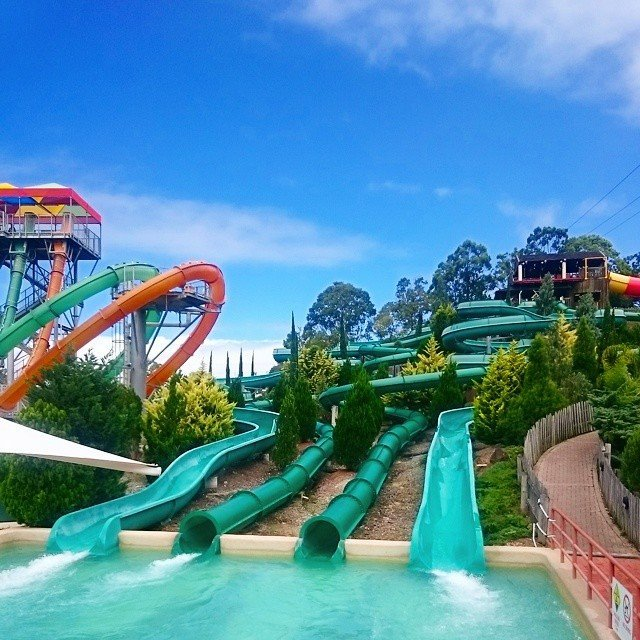 Theme parks on the gold coast gold coast for Splash pool show gold coast
