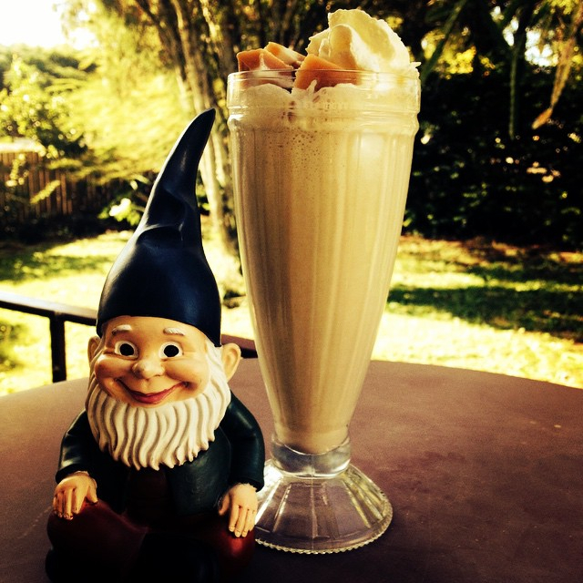 little, gnome, book, shop, coffee, cafe, snacks, wynnum