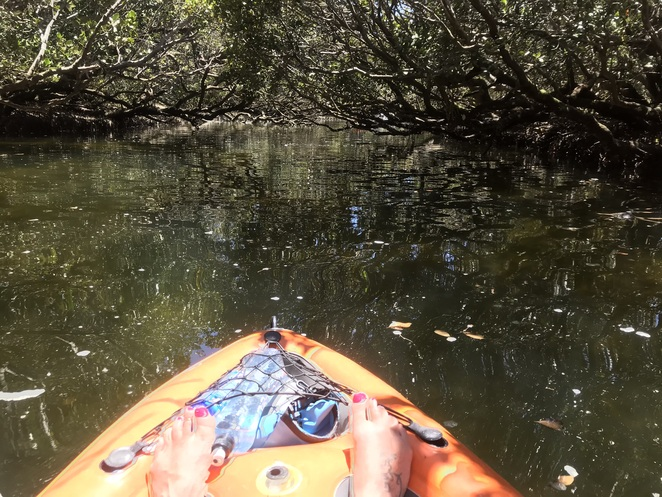 Paddling in the Little Amazon