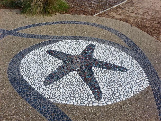 Princess Park, Queenscliffe, Bellarine, Parks, Picnic Spots, Playgrounds, near Geelong, Mosaic, star mosaic, mosaic on footpath, starfish mosaic, coloured tiles,