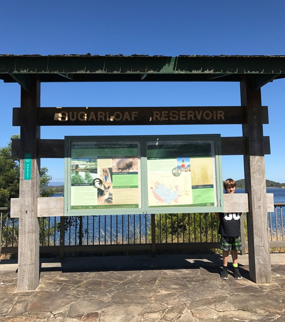 sugarloaf reservoir lookout picnic area walk day trip family free